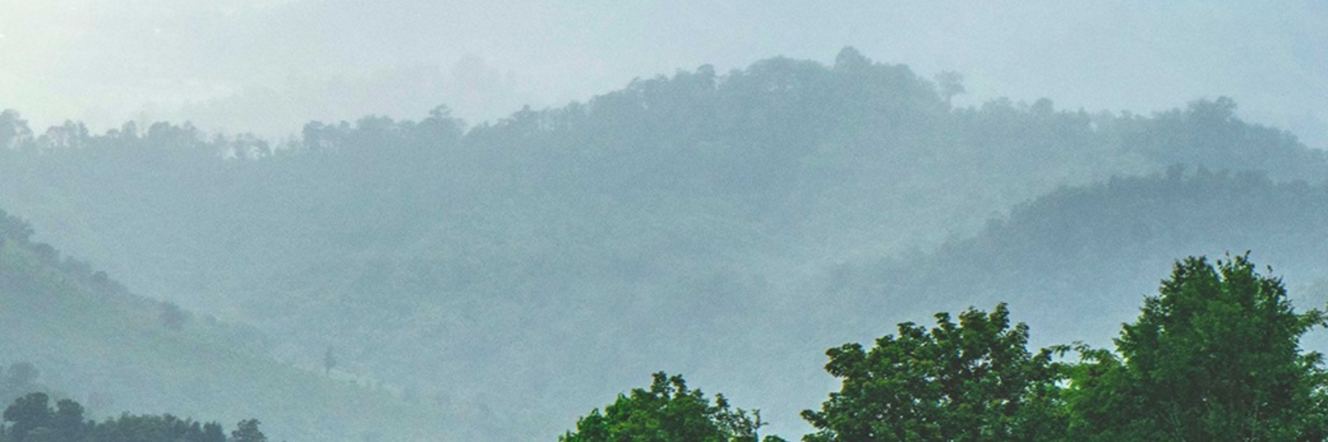 จุดชมทะเลหมอกในฤดูฝนที่เดินทางง่ายสะดวกสบายที่สุดจุดหนึ่ง