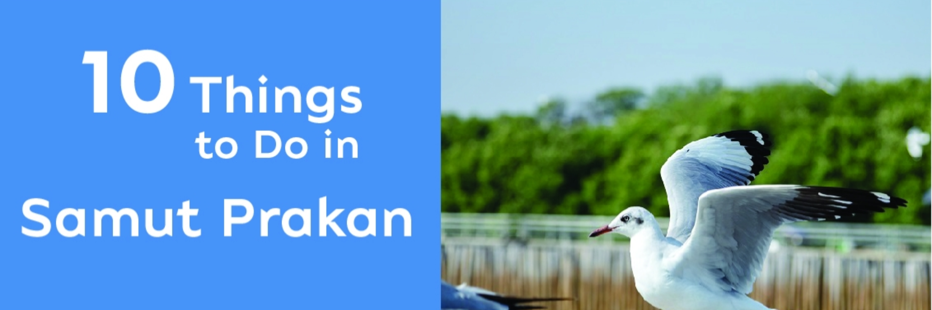 10 THINGS TO DO IN SAMUT PRAKAN