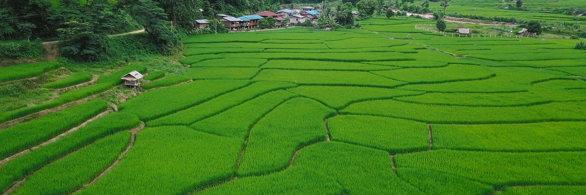 Where to Go in Nan Province on Your Next Holiday