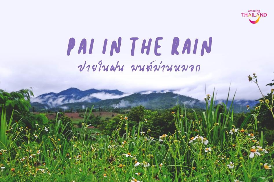 Pai in the Rain