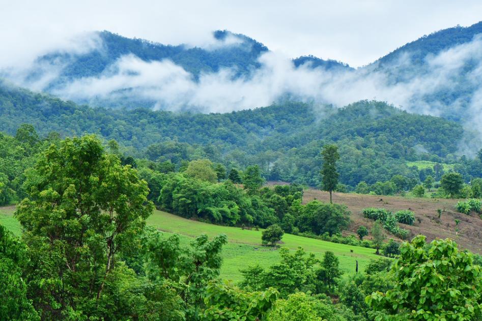 ปายในฝน มนต์ม่านหมอก